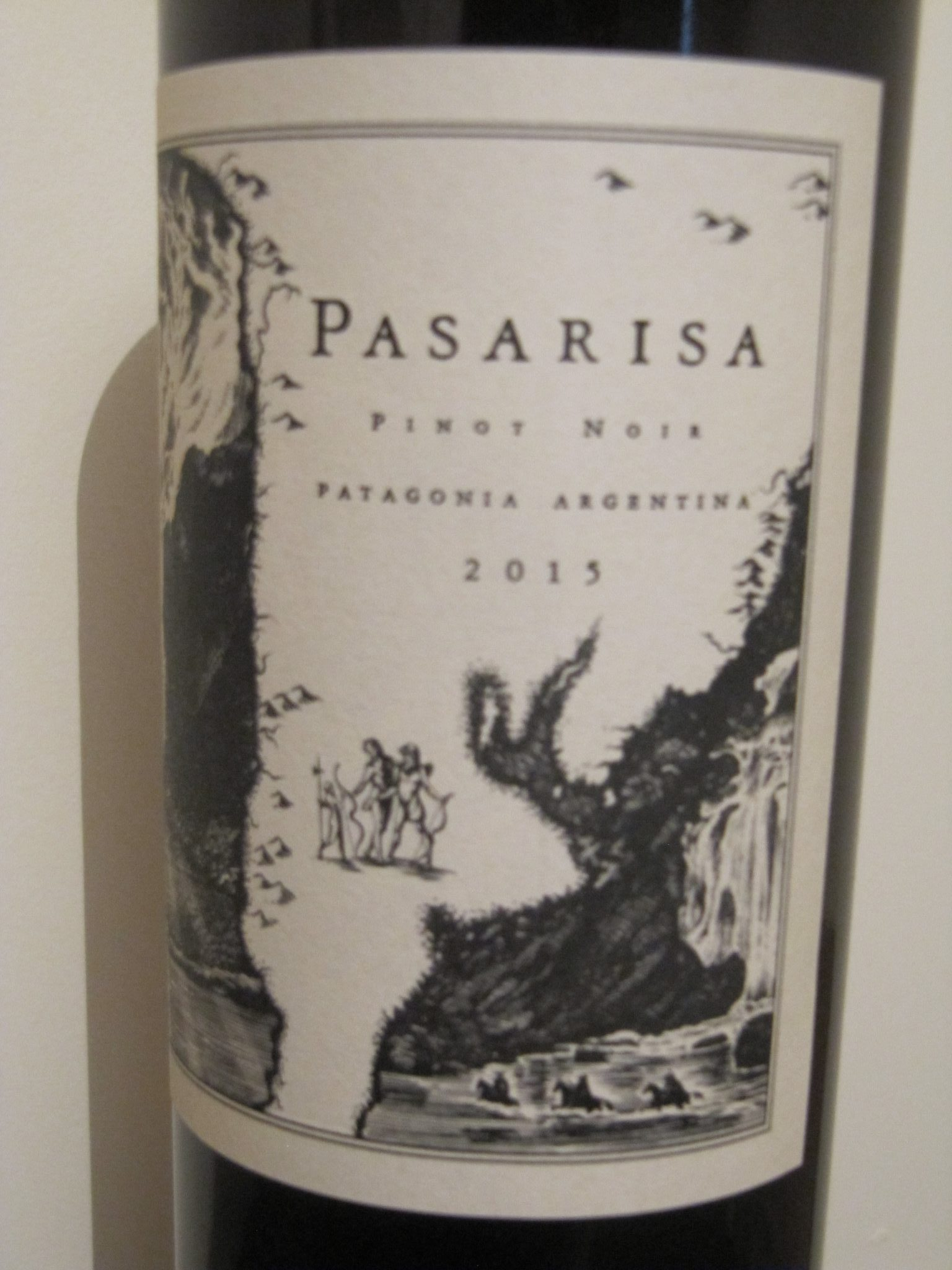2015 Pinot Noir, Pasarisa, Patagonia, Argentina